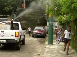 Kampf gegen Dengue: Mit Insektiziden gegen das Moskito (Foto: AP)