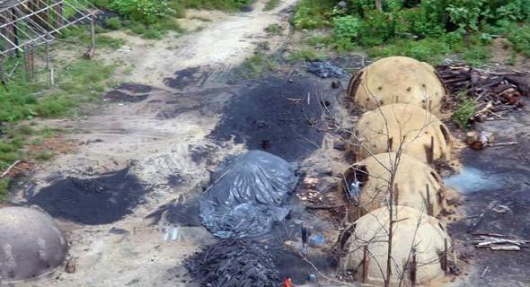 Gut kann man die Arbeiter bei den illegalen Öfen für Holzkohle sehen (Foto: Glauco Araújo/G1)