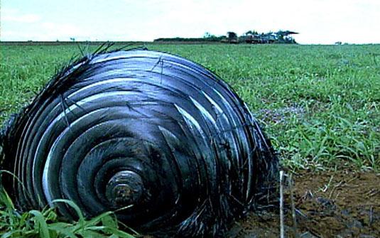 Ein unbekanntes Objekt - vermutlich aus dem All - sorgt derzeit in Goiás für Aufregung (Foto: AE)