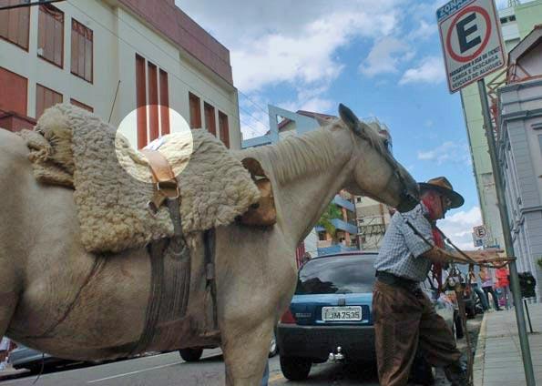 Ein Pferd mit Parkschein - ab sofort im Süden Brasiliens kein ungewöhnlicher Anblick mehr (Foto: Diário de Santa Maria)