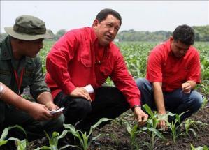 Viel Erdöl und wenig zu essen. Chavez bittet Brasilien um Hilfe bei Lebensmittelkrise (Foto: infolatam.com)