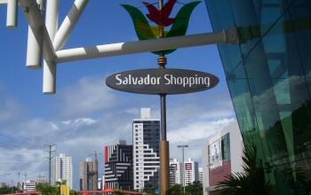 salvador3tn
