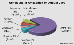 abholzung-amazonas2009-grafik