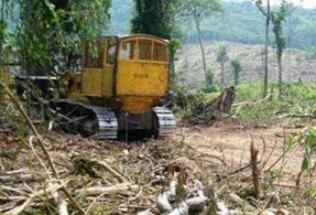 abholzung-amazonas-normal