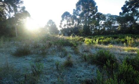 urupema-frost