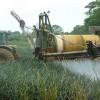 Brasilianisches Gemüse massiv mit Pflanzenschutzmitteln belastet