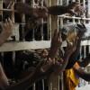 Mörder warten in Brasilien bis zu 8 Jahre auf Urteil