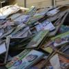 Wahlen in Brasilien kosteten 1,6 Milliarden Euro