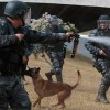 Brasilianischer Journalistenverband beklagt massive Übergriffe auf Pressevertreter