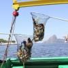 Olympiade 2016: Bucht vor Rio de Janeiro weiterhin von Müll geprägt