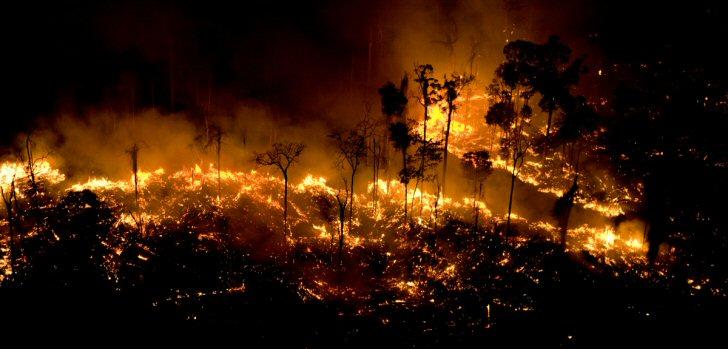 fogo-greenpeace-amazonas